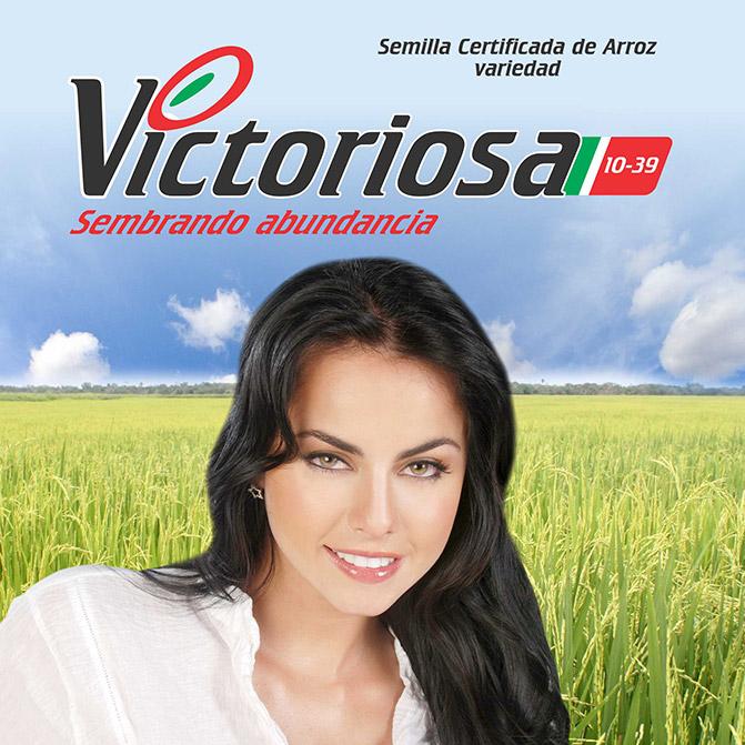 semilla_arroz-victoriosa_semillano